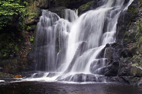 Arthur Young Nature Trail, Muckross and Torc, Killarney