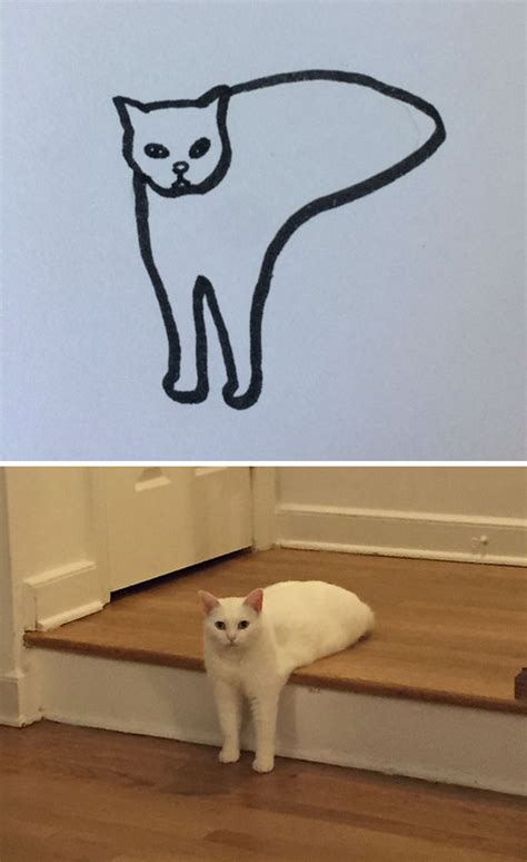 These Poorly Drawn Cats Are More Realistic Than You Think