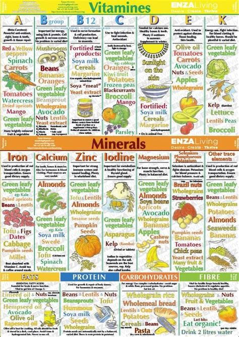 Pin by Vitamins And Minerals on Kids' Vitamins and