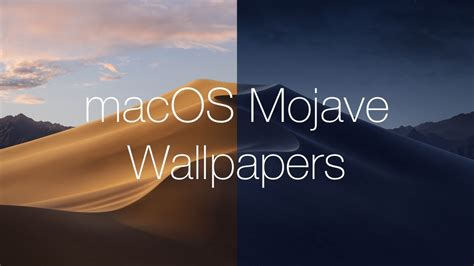 Download the New macOS Mojave Wallpapers [Light and Dark]